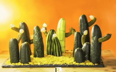 Un paesaggio di cetrioli cactus!