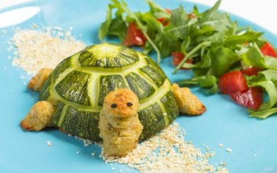 Da semisfera a tartaruga
